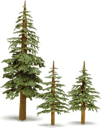 lodgepole_pine_trees_295-t37_big.jpg